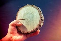 Petit morceau de main en bois coup?e d'identifiez-vous photographie stock libre de droits