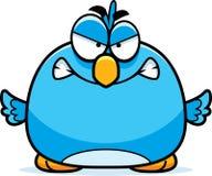 Petit oiseau bleu fâché illustration de vecteur
