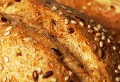 Petit pain avec haut étroit des graines de sésame Image libre de droits
