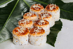 Petit pain cuit au four avec les graines de sésame et le chapeau noir, feuilles tropicales, toujours la vie, cuisine japonaise photos stock