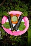 Petit pain d'algue Photos libres de droits