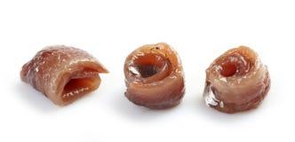 Petit pain d'anchois Photographie stock libre de droits
