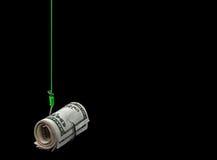 Petit pain d'argent sur l'hameçon Image stock