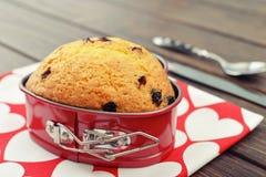 Petit pain de canneberge Photo stock