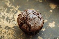 Petit pain de chocolat Image libre de droits