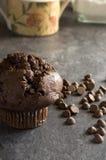 Petit pain de chocolat avec des puces de chocolat Photos stock