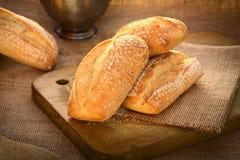 Petit pain de ciabatta Image stock