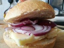 Petit pain de fromage d'oignon rouge et de cheddar Image stock