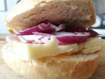 Petit pain de fromage d'oignon rouge et de cheddar Photo libre de droits