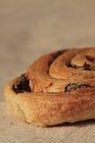 Petit pain de groseille Photographie stock