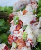 Petit pain de homard Photos libres de droits
