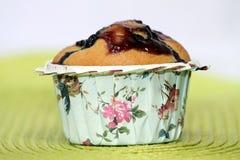 Petit pain de myrtille Images stock