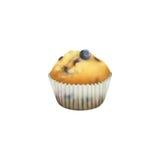 Petit pain de myrtille dans le support de papier de petit gâteau Photo stock