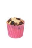 Petit pain de raisins secs d'isolement sur un fond blanc Images stock