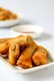 Petit pain de ressort de thon Image stock