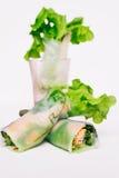 Petit pain de ressort frais thaïlandais Photographie stock libre de droits