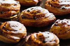 Petit pain doux gratuit de remous de gluten frais avec des raisins secs Photo stock