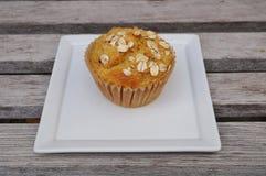 Petit pain fait maison de farine d'avoine de potiron Image stock