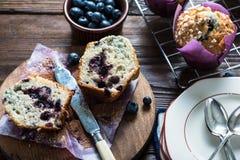 Petit pain fait maison frais de myrtille, coupe dans la moitié Image stock