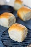 Petit pain organique frais fait maison doux délicieux de plan rapproché, table du Br Image stock