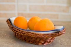 Petit panier d'abricots Photos libres de droits