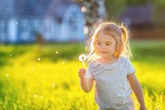 Petit parc ensoleillé de fille au printemps Photographie stock libre de droits
