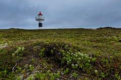Petit phare sur une roche avec des fleurs sur le premier plan Image libre de droits
