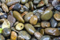 Petit plan rapproché de roches Image stock
