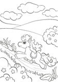 Petit poney mignon fonctionnant le long de la route dans le domaine Image stock