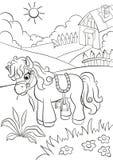 Petit poney mignon mangeant l'herbe à la ferme Image stock