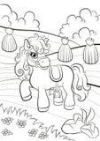 Petit poney mignon se tenant sur le champ Image libre de droits