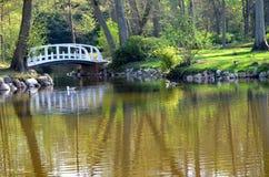 Petit pont de nature sur le parc images libres de droits