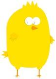 Petit poulet jaune de bébé Illustration Libre de Droits