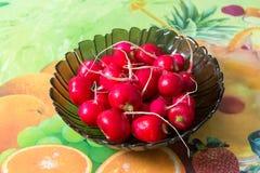 Petit radis organique cru de jardin dans une cuvette sur la table de cuisine Image stock