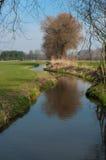 Petit ruisseau Photos stock