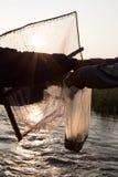 Petit sachet en plastique de poissons Photo stock