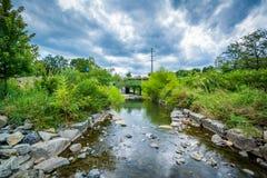 Petit Sugar Creek chez Elizabeth Park, en Elizabeth, Charlotte, N image libre de droits