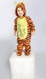 Petit tigre Images stock