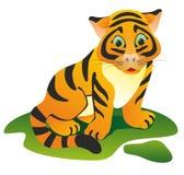 Petit tigre sur une pelouse verte Photographie stock