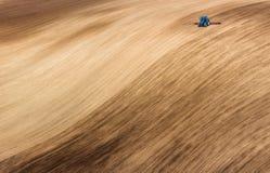Petit tracteur bleu labourant le champ onduleux de Brown Vue scénique de tracteur de ferme qu'en labourant le ressort mettez en p Photographie stock