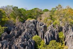 Petit Tsingy DE Bemaraha royalty-vrije stock fotografie