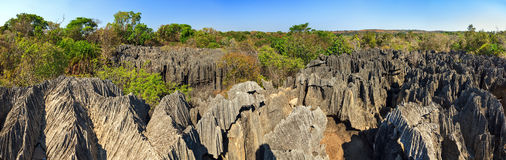 Petit Tsingy-panorama royalty-vrije stock fotografie