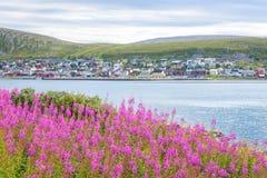 Petit village de pêche pittoresque Kjøllefjord par le bord de la mer dans Finnmark, Norvège image libre de droits