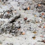 Petit volcan de boue Photographie stock libre de droits