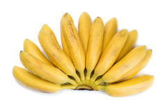 Petite banane tropicale naturelle dans un groupe Image libre de droits