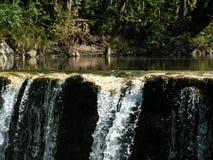 Petite cascade à écriture ligne par ligne Photo libre de droits