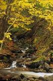 Petite cascade à écriture ligne par ligne d'automne images stock