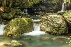 Petite cascade à écriture ligne par ligne dans la forêt Photo stock