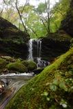 Petite cascade à écriture ligne par ligne dans la forêt d'automne Photos stock