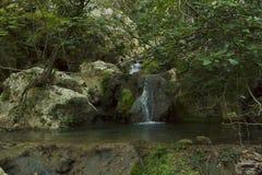 Petite cascade à écriture ligne par ligne de forêt Images libres de droits